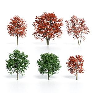 树3D模型-100101S83