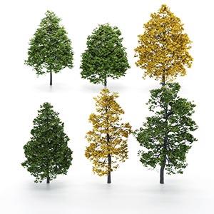 树3D模型-100101S85