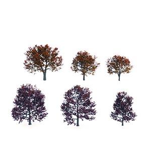 树3D模型-100101S86