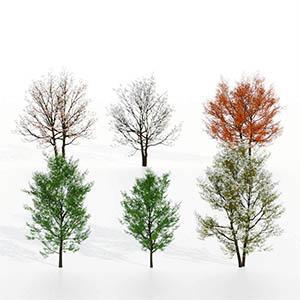 树3D模型-100101S88