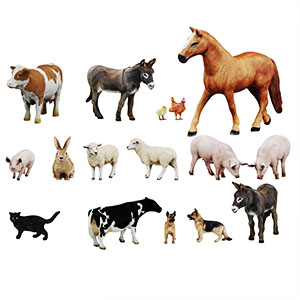 动物3D模型-0902P3