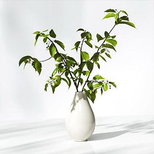 花瓶3D模型-1008F76