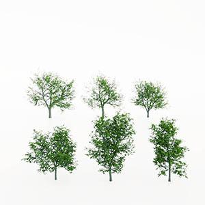 树3D模型-100101S94